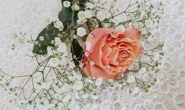A Great Wedding Is Definitely Not To Sneeze At! Begin Using These Tips!